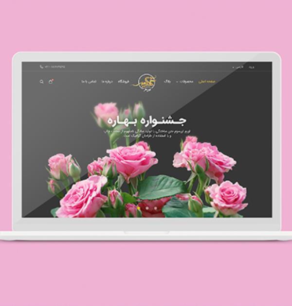 طراحی سایت و پرتال